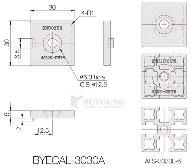 BYECAL-3030A(DO).jpg